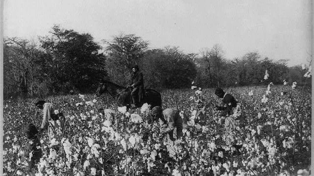  Negro Slavery today _FE(1)